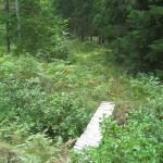 Kuldiga-Mezvalde-I-mass-grave-3-e1469099495657